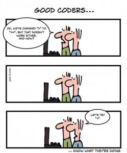 How to hire a programmer, hire a programmer